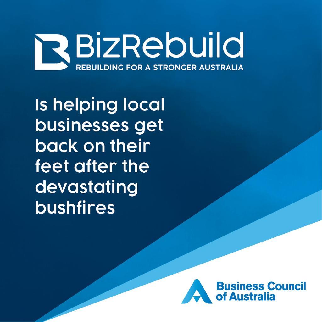 Biz Rebuild
